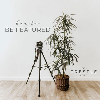 tripod and camera on white wall with plant wood floor everett photographer